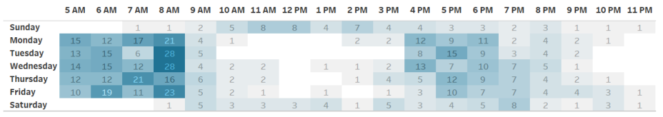 Daily Trip Schedule